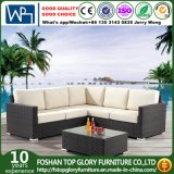 Rattan Wicker Sofa Dining Leisure Outdoor Furniture (TG-400)