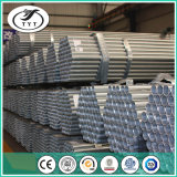 Manufacturer Hot Dipped Galvanized Steel Pipe BS1387