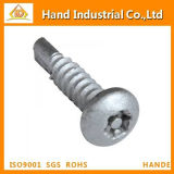 Torx 30 Drilling Fastener Screw
