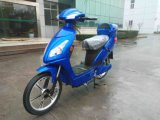 Electric Bike (HSM-302 (EN))
