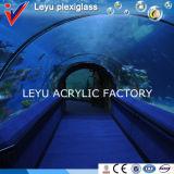 Curved Acrylic Sheet for Tunnel Aquarium