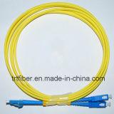 LC-Sc Sm 9/125 Duplex 2.0mm 1m Optic Patch Cord