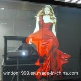 Hologram Projector Holographic Rear Projection Film
