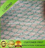 Hot Sell Knitted Anti Bird Netting/Fruit Net /Plastic Netting