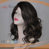 Elegant Charming Full Hand Tied PU Edge Highlights Color Lace Wig