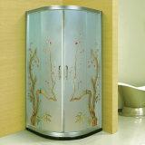 Beauty Manual Carving Art Glass Bathroom Shower Cabin (A-093)