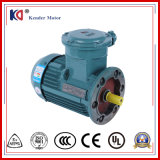 380V Frame Proof Three Phase Electric AC Motor for Crane