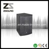 10′′ Full Rang PA Speaker Line Array System PA System Speaker U10