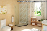 5 Levels Standard Export Carton Package Shower Bathroom Screen