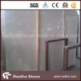 Baiyu LAN/Shell Beige Marble with Directly Imported Stone