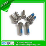 Pan Head Stainless Steel Anti-Theft Bolt