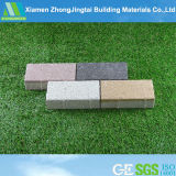 Water Permeable Bricks for Anti-Acid/Anti-Skid