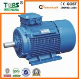Y2 Series Three Phase 50kw Electric Motor for Sale