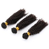 Kinky Curly Remy Brazilian/ Virgin Indian Hair Extension