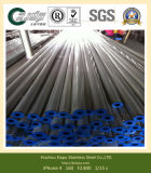Stainless Steel Welded Tube/Pipe for Industrial Usage Paper