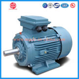 IP 54 Electrical Induction Motor 30 Kw for Air Compressor
