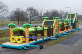 Various Types Inflatable Obstacle for OEM and ODM (A505)