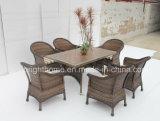 2015 New Design Dining Set Wicker Furniture/Outdoor Leisure Furniture (BP-3033)
