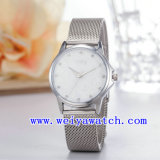 Watch Customize Stainless Steel Ladies Watches (WY-027B)