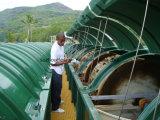 Sw Package Sewage Treatment Plants