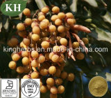 Sapindus Mukorossi Extract, Sapindus Extract, Saponins 40%, 70% by UV