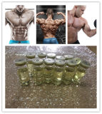 Injectable Top Trenbolone Enanthate/Tren E Powder for Muscle Growth