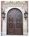 America Classic Decorative Iron Doors and Windows