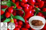 Wolfberry Extract: Polysaccharides 10%, 15%, 20%, 40% by UV