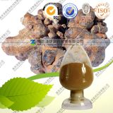 Natural High Quality Radix Notoginseng P. E Notoginsenosides