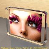 Customized Sizes&Shapes Acrylic Photo Frame/Plastic Acrylic Picture Display