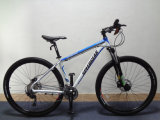 29inch MTB Bicycle/Disc Brake Bicycle