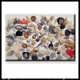 Kitchenware Tempered Glass Chopping Board with Sea Shell Decal Pattern