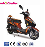 800W E Motorcycle Sports Electric Motorcycle