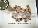 High Quality Mushroom Straw Mushroom From China
