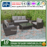Viro Rattan Outdoor Sofa Furniture