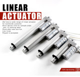 Xtl 24V Linear Actuator for Patient Lifter