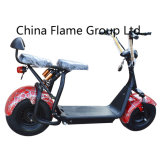 1000W Electric Harley Scooter with F/R Suspension, 2 Seats