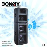 Boway (BW-822LAB) Professional Loud Speaker