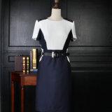 New Designs Model Women Formal Workwear One Pieces Lady Dress