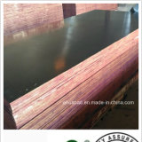 Combined Marine Plywood/ Black Film Faced Plywood for Constructions (HB020)
