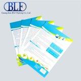 Guangzhou Custom Design Brochure Printing