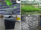 Woven Plastic Weed Mat Weedmat for Farm