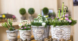 Pastoral Eco-Friendly Vintage Decorative Round Willow Flower Pot