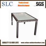 Rattan Table/Outdoor Furniture (SC-B1078-6)