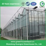 High Quality Vegetable Planting Greenhouse PC Sheet Green House