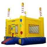 Moonbounce, Inflatable Birthday Castle (B1113)
