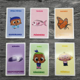 Brand New Playing Cards Educational Cards