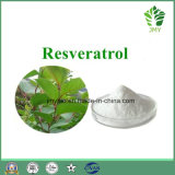 Natural Giant Knotweed Extract Powder Resveratrol 10%~98%