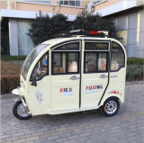 Wholesale Luxury Fashion Tricycle with Luggage Rack