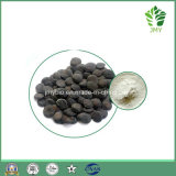 Hot Sales 99% 5-Htp Griffonia Simplicifolia Seed Extract